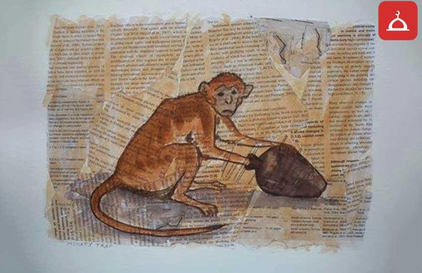 aç gözlü maymun