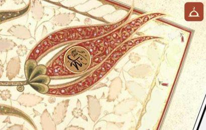 Dımâd bin Sa'lebe (r.a.)